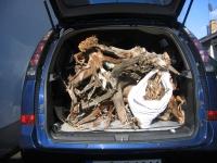 Ein Auto voll Moorkienholz