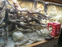 Moorkienholz fertig eingebaut