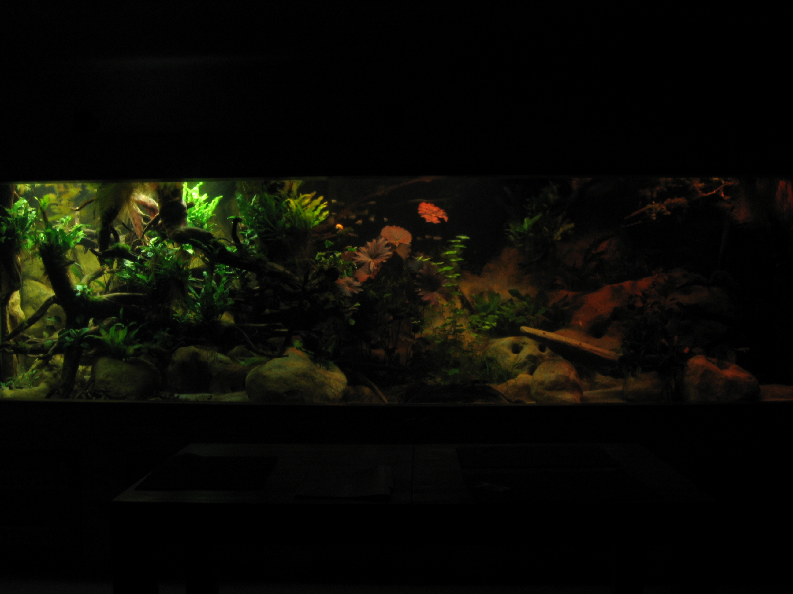 aquarien silikon trockenzeit: bostik sanitärsilicon profi silbergrau