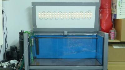 Beleuchtung über LEDs
